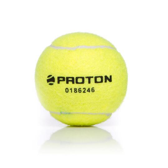 Pelotas Tenis PROTON Amarillo