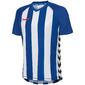 Camiseta Blanquiazul Hummel Authentic V Striped